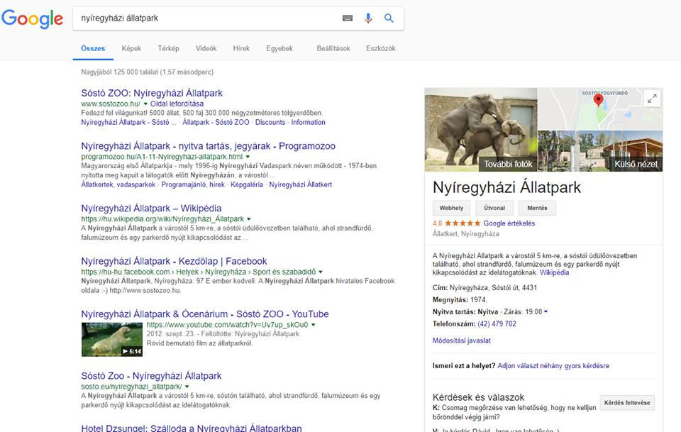 nyíregyházi állatpark, egy elefánt meghágja a társát